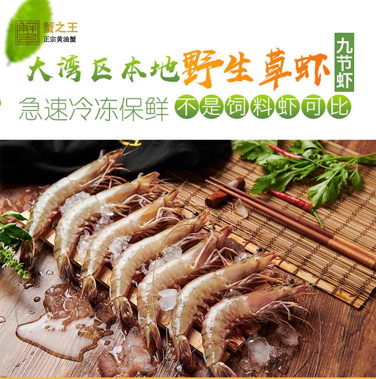 广东咸淡水鲜活九节虾